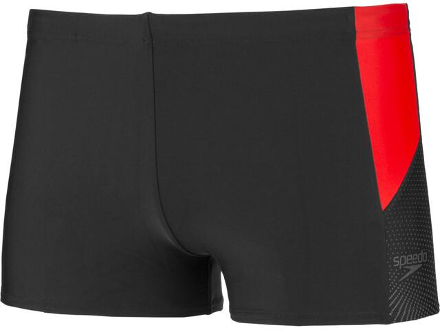 speedo Dive Short de bain Homme, black/red